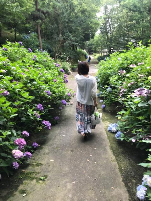 紫陽花を求め、県北へヾ(*゚Д゚)人(*゚д゚)ノ【曙店】 広島県広島市にあるザ・ゴールド 曙店の画像5