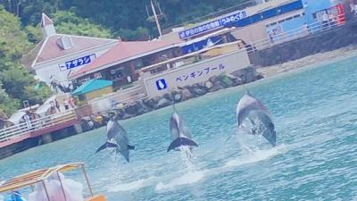 下田海中水族館【東岡谷店】 長野県諏訪郡にあるザ・ゴールド 東岡谷店の画像2
