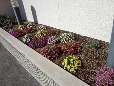 花壇【諏訪店】 長野県諏訪市にあるザ・ゴールド 諏訪店の画像2