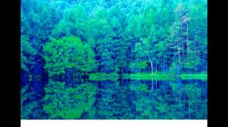 御射鹿池(みしゃがいけ)【南松本店】 長野県松本市にあるザ・ゴールド 南松本店の画像2
