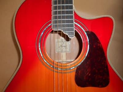 アコースティクギター 【穂高店】 長野県安曇野市にあるザ・ゴールド 穂高店の画像1