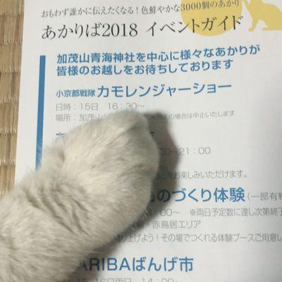 今年も開催「あかりば」【県央店】 新潟県燕市にあるザ・ゴールド 県央店(※10/21に閉店いたしました)の画像2