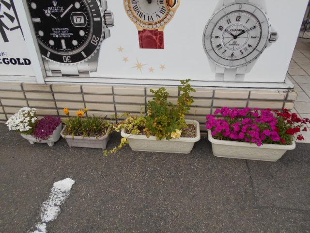 かわいいお花ちゃん【福島店】 福島県福島市にあるザ・ゴールド 福島店の画像3