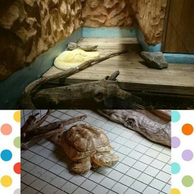 アクアテラス錦ヶ丘♪【福島店】 福島県福島市にあるザ・ゴールド 福島店の画像2