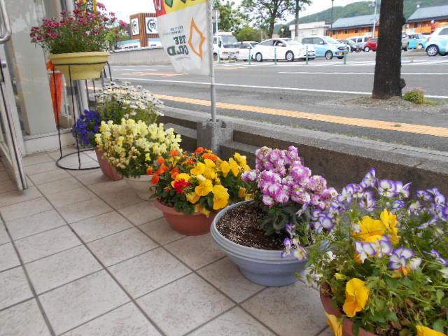 かわいいお花ちゃん【福島店】 福島県福島市にあるザ・ゴールド 福島店の画像2