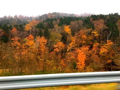 秋ですね♪  【旭川末広店】 北海道旭川市にあるザ・ゴールド 旭川末広店の画像3