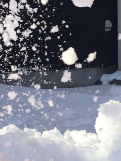 snow【旭川末広店】 北海道旭川市にあるザ・ゴールド 旭川末広店の画像2