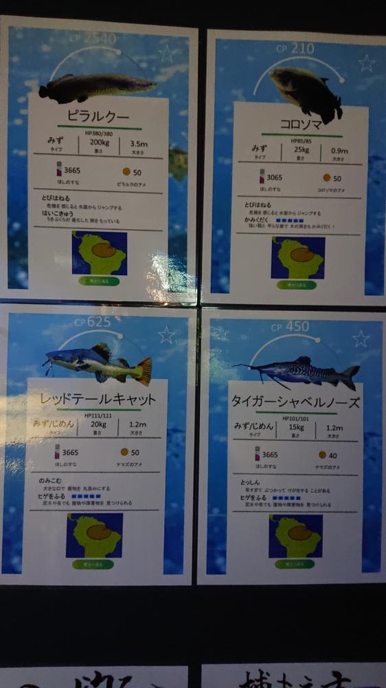 北の大地の水族館【函館店】 北海道函館市にあるザ・ゴールド 函館店の画像3