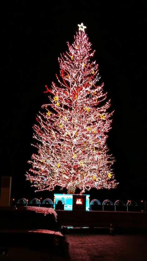 函館クリスマスファンタジー【函館店】 北海道函館市にあるザ・ゴールド 函館店の画像2