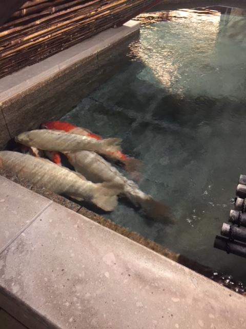 温泉【発寒店】 北海道札幌市にあるザ・ゴールド 発寒店の画像5