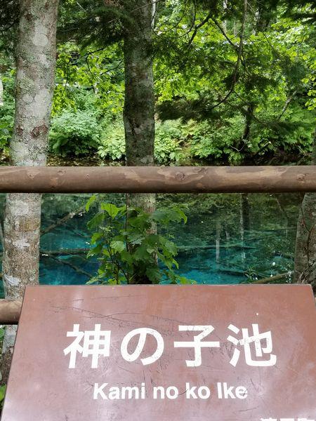 道東 湖めぐり 【江別店】 北海道江別市にあるザ・ゴールド 江別店の画像4