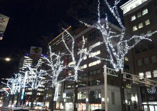 どこもかしこも、クリスマス一色 【苫小牧店】 北海道苫小牧にあるザ・ゴールド 苫小牧店の画像2